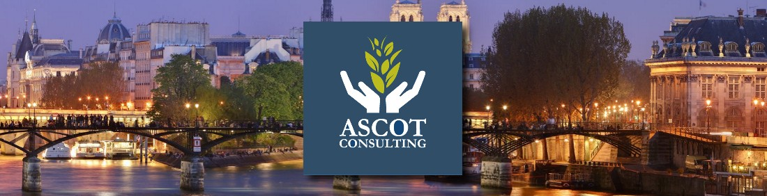 Ascot Consulting
